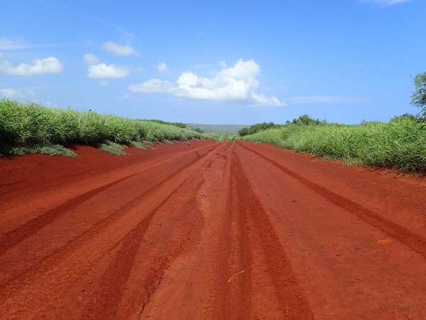The start of the red dirt road to the Mo'omomi Preserve