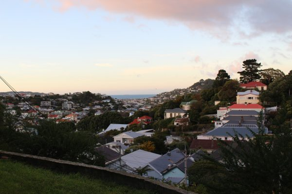 The view of Hataitai from our rental.