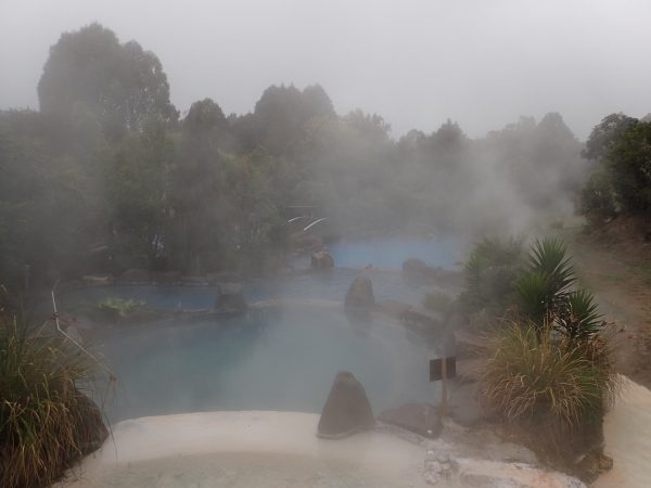 The geothermal pools at  Wairakei Terraces Hot Pools.